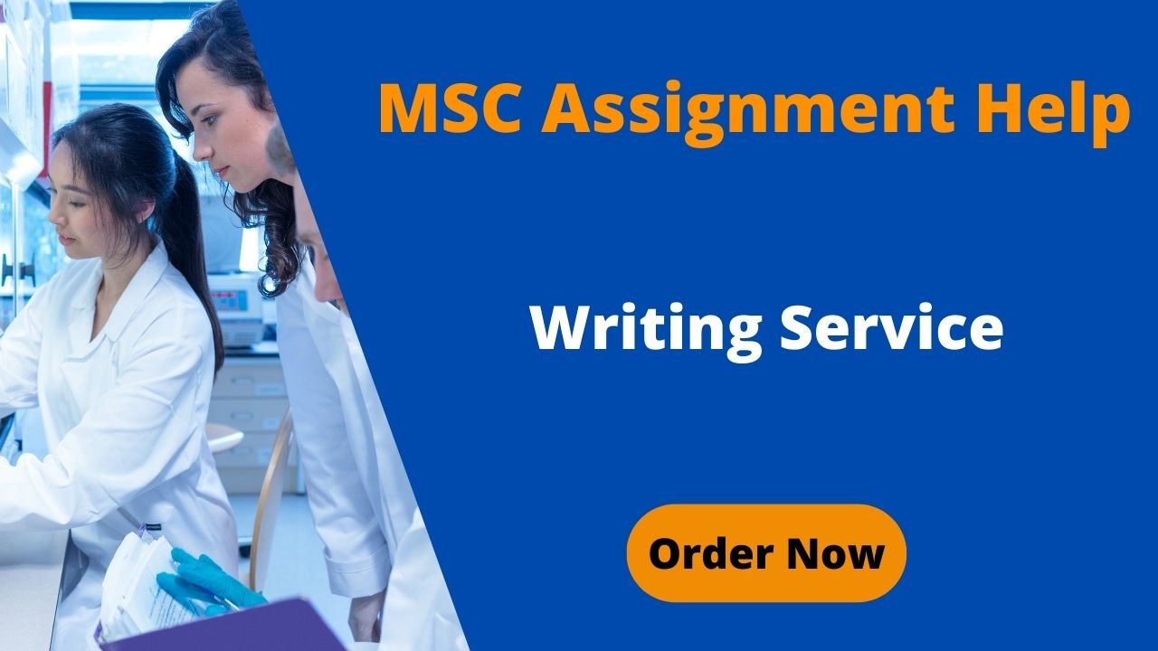 MSC Assignment Help